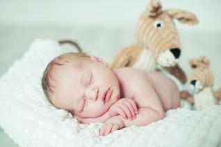 Photographe nouveau né, Orléans